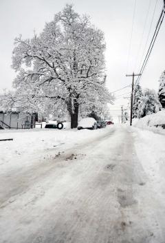 da snow.jpg